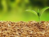 Pellet czy ekogroszek