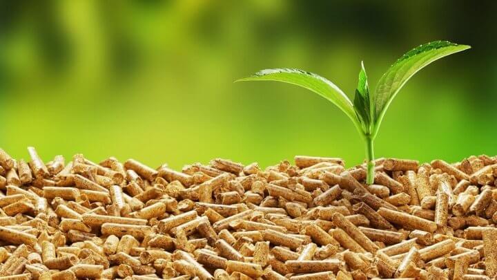 Pellet czy ekogroszek? Dlaczego warto zainwestować w kotły na biomasę?